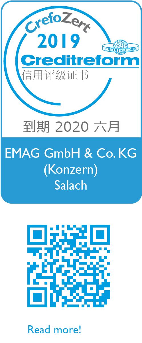 Weblogo 2019 Chinesisch 7030123638 E M A G Gmb H & Co K G Konzern